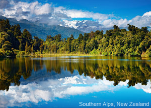 New Zealand, Maxx Honey, Landscape